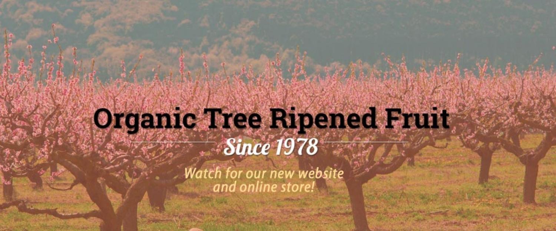 Mortons Organic Orchards premium fruit
